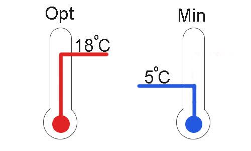 При какой температуре можно хранить ламинат